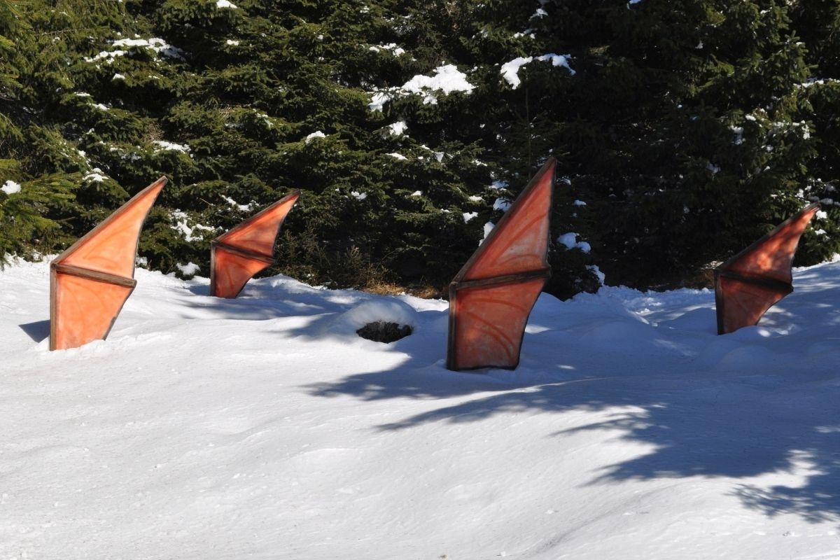 foresta-dei-draghi-in-inverno-predazzo-val-di-fiemme-trentino-2