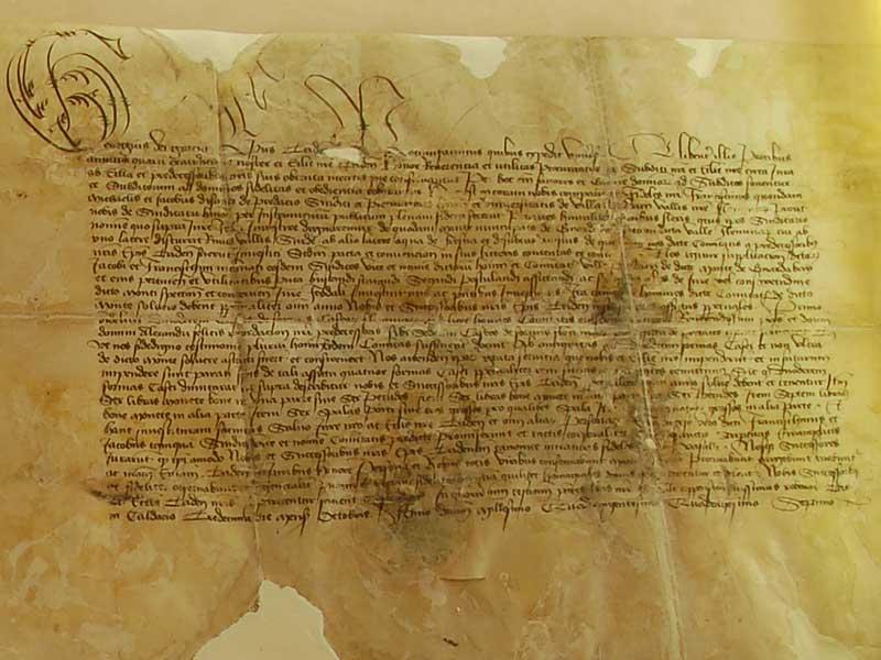 regola feudale documento d'investitura
