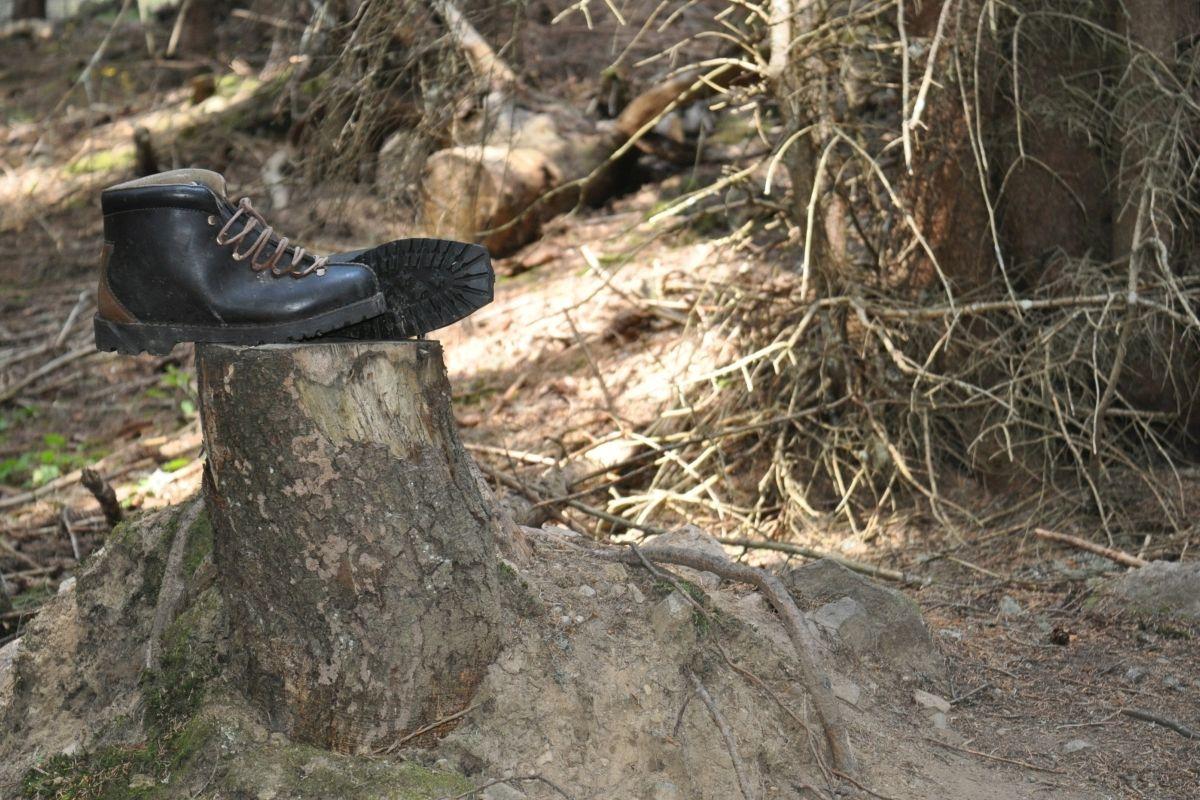 sentiero del pastore distratto - scarponi