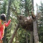 Cosa fare in montagna d'estate con i bambini piccoli