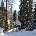 I percorsi a piedi nello Ski Center Latemar