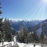 Alpine Coaster Gardonè a Predazzo: divertimento per tutti, non solo per i più piccoli!